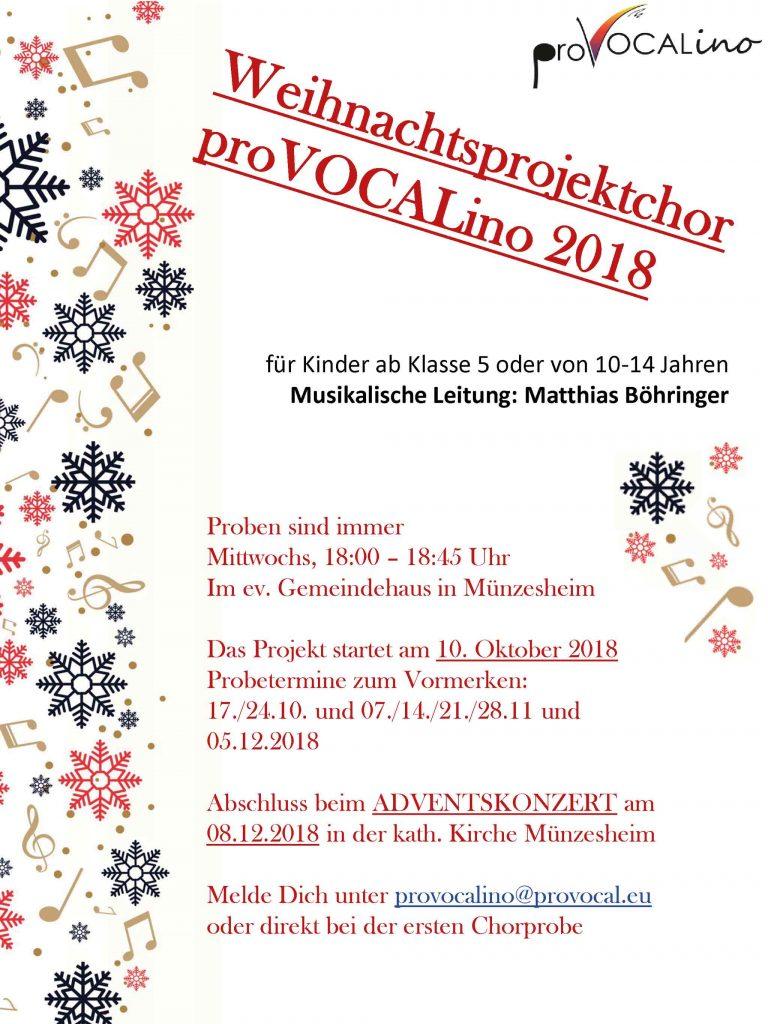 weihnachtsprojekt proVocalino